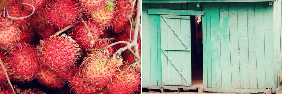 Vietnam Wedding Photographer: Lychees & door