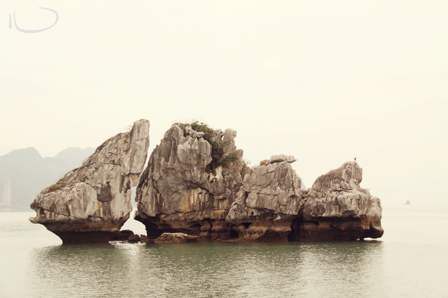 Halong Bay Vietnam Wedding Photographer: Fish shaped limestone karst
