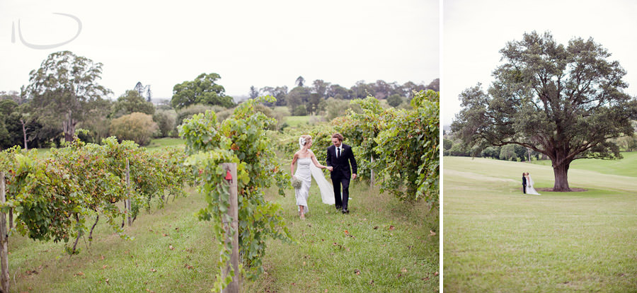 Silos Estate Berry Wedding Photographer: Bride & Groom portrait in vineyards