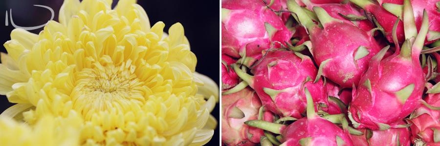 Vietnam Wedding Photographer: Flower & dragon fruit