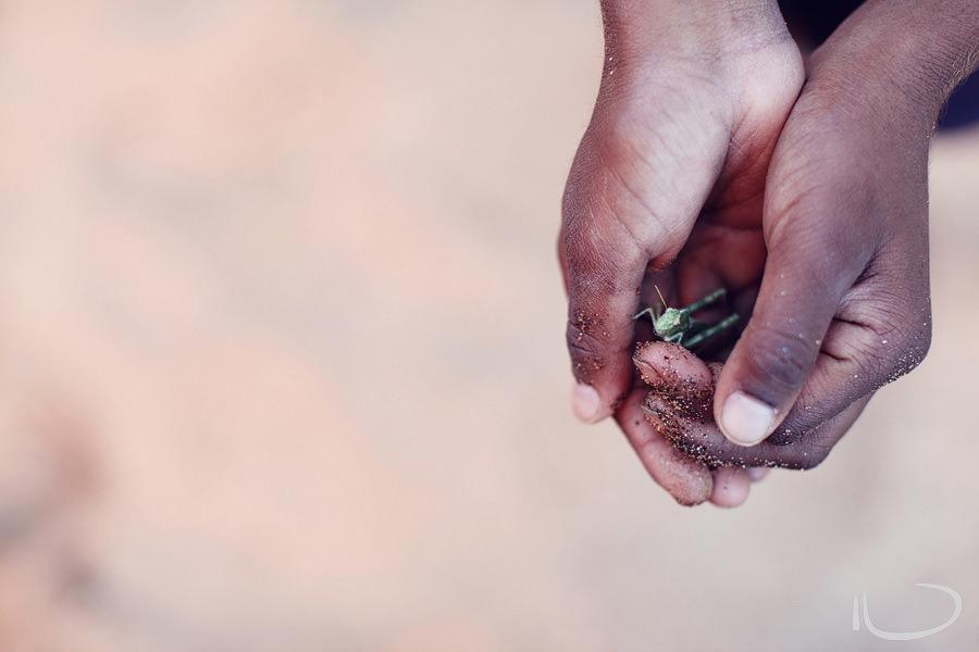 Alice Springs Family Photographer: Boy holding grasshopper in hands