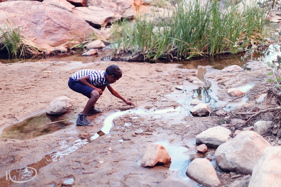 Alice Springs Family Photographer: Boy rescuing fish