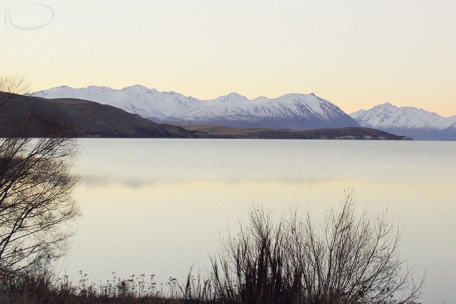 New Zealand Wedding Photographer: Lake Tekapo