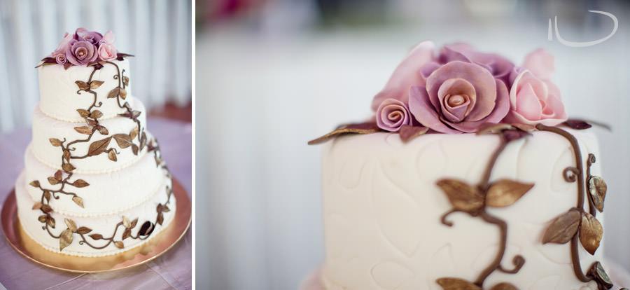 Marsfield Wedding Photographer: Wedding Cake
