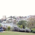 Lavendar Bay Engagement Photographer