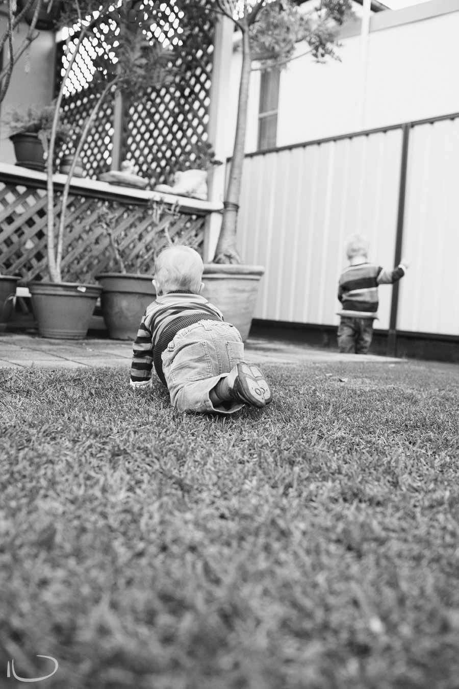 Mona Vale Child Photographer: Twins crawling around yard