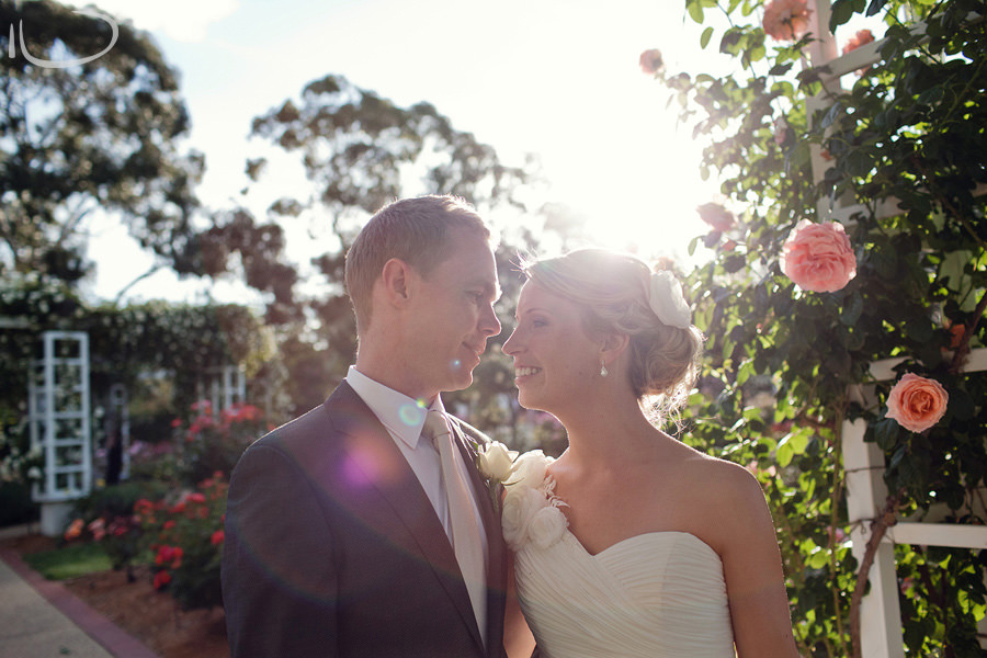 Canberra Wedding Photographer: Bride & groom rose garden portrait