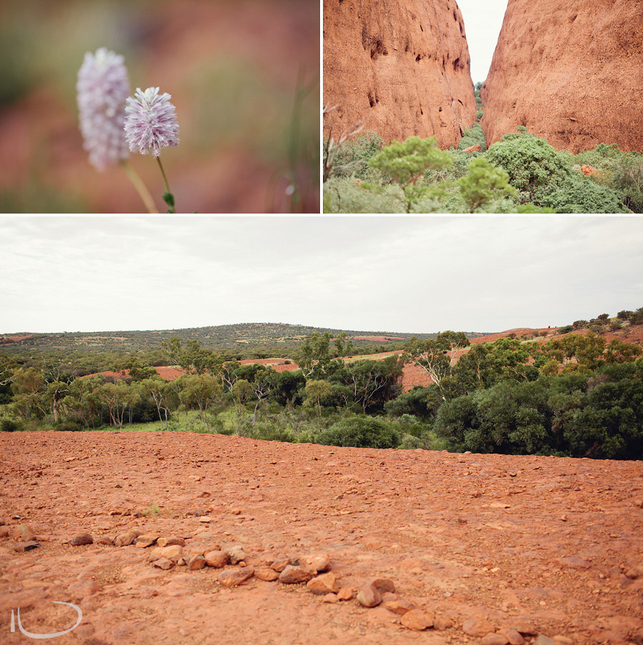 Kata Tjuta Photography: Australian Red Centre