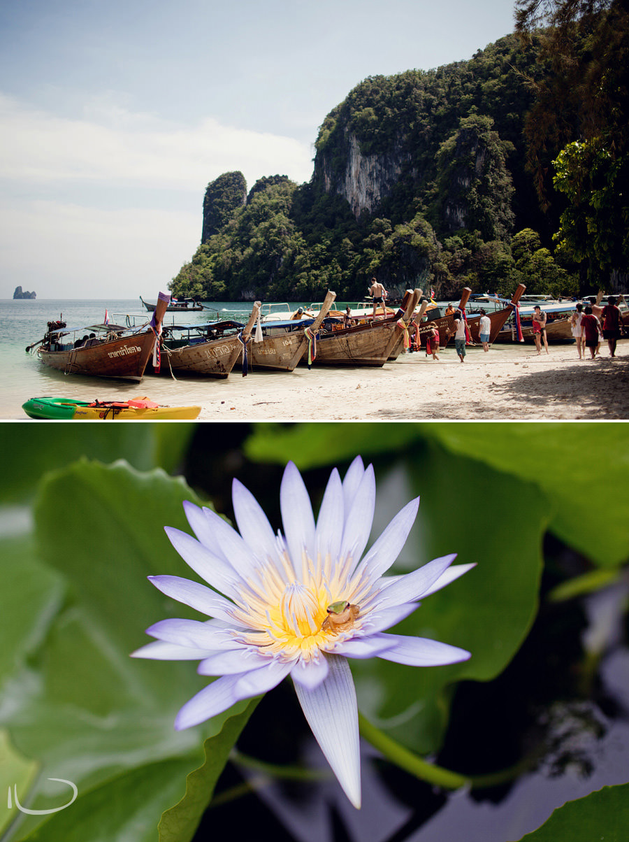 Thailand Wedding Photographer: Frog on Lotus & Krabi Islands