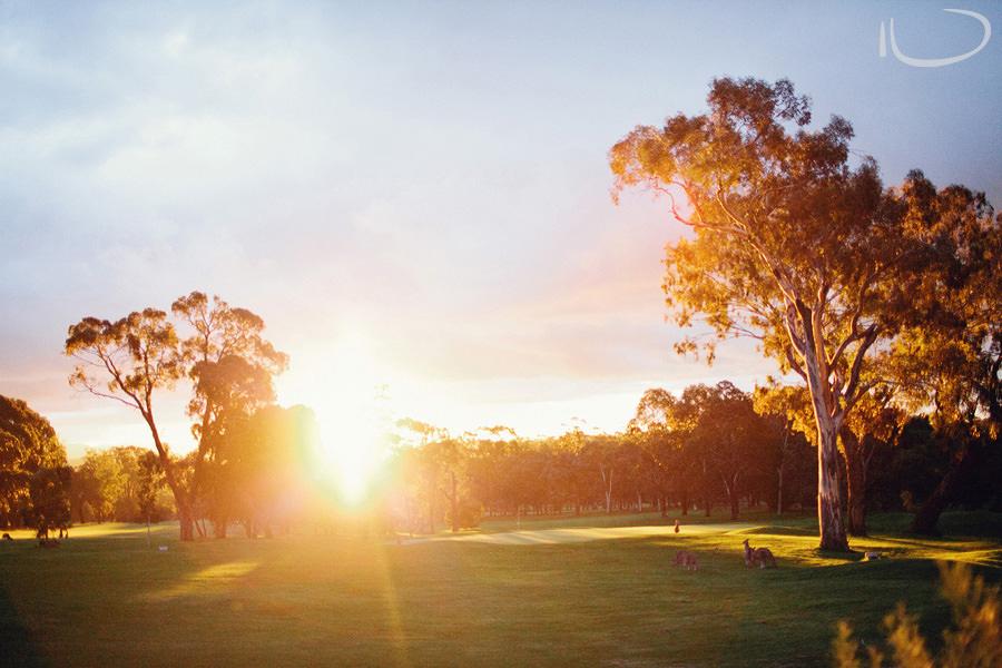 Federal Golf Club Wedding Photographers: Wedding Sunset
