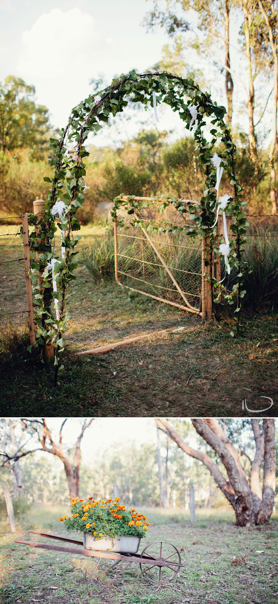 Glen Alice Wedding Photographer: Ivy covered gate