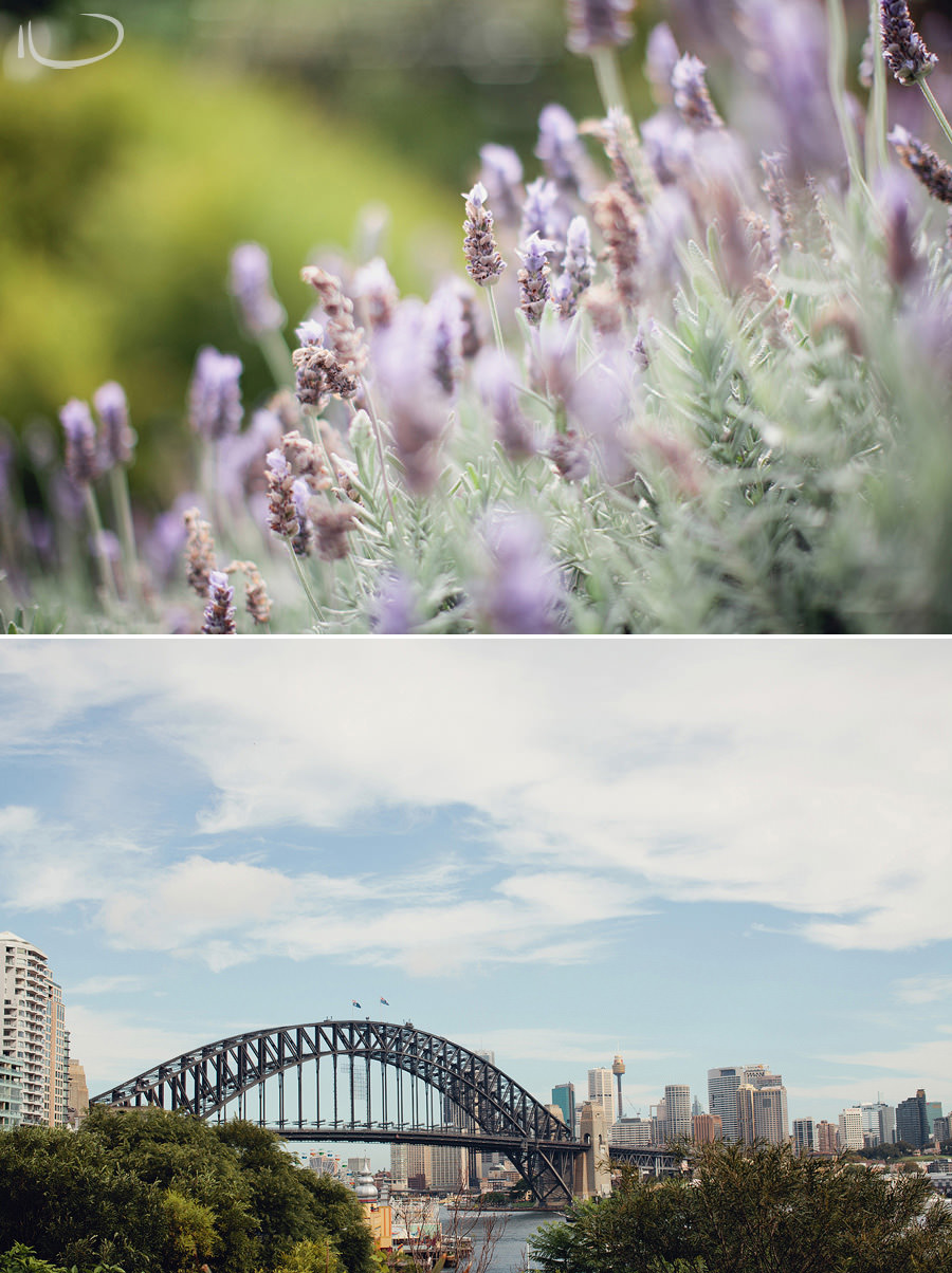 Sydney Wedding Photographer: Lavender Bay