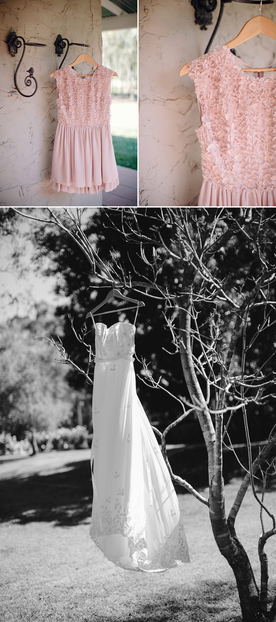 Thistle Hill Wedding Photographer: Wedding dress hanging in tree