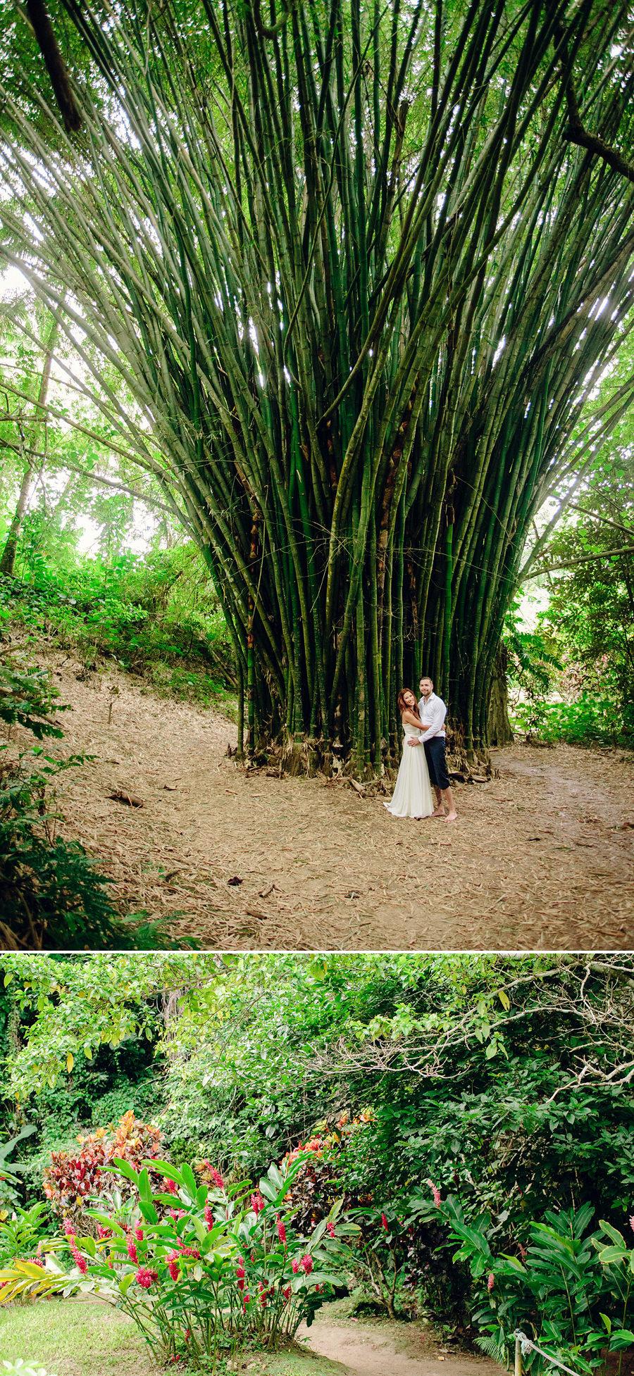 Mele Cascades Vanuatu Wedding Photographer: Bamboo