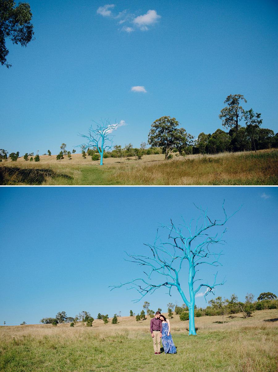 Mount Annan Botanical Gardens Engagement Photography: Kelsi & Chris