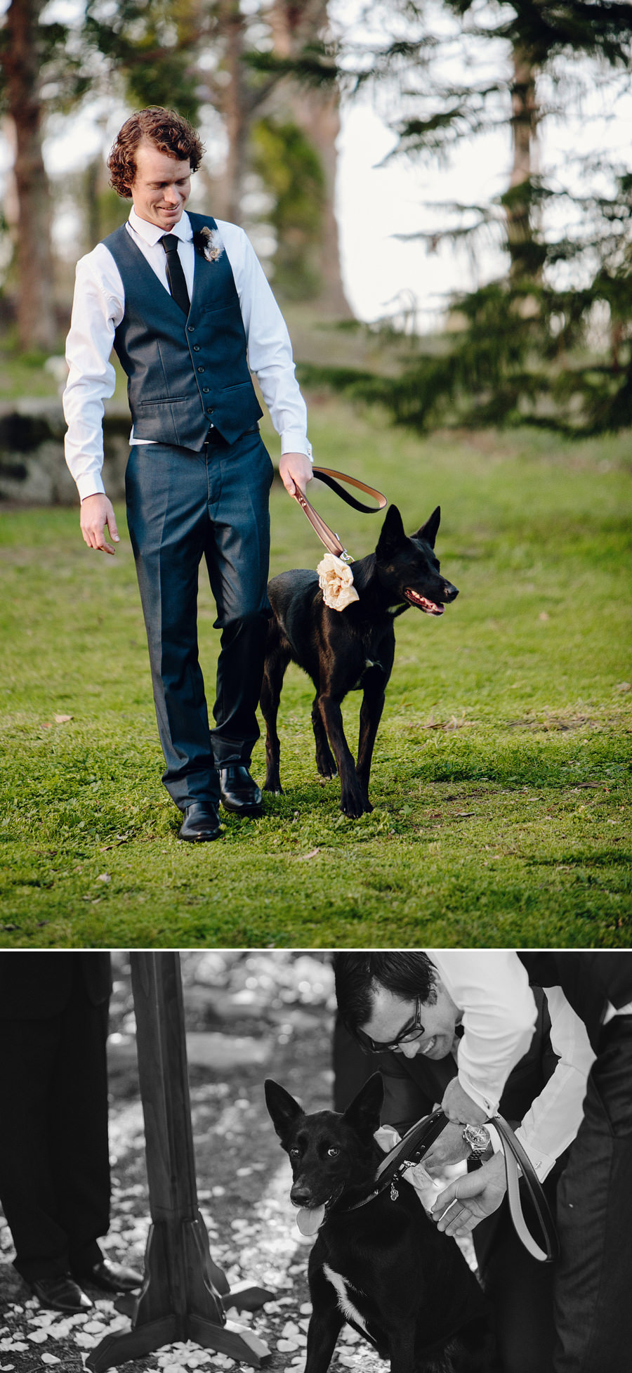 Backyard Wedding Photography: Ceremony