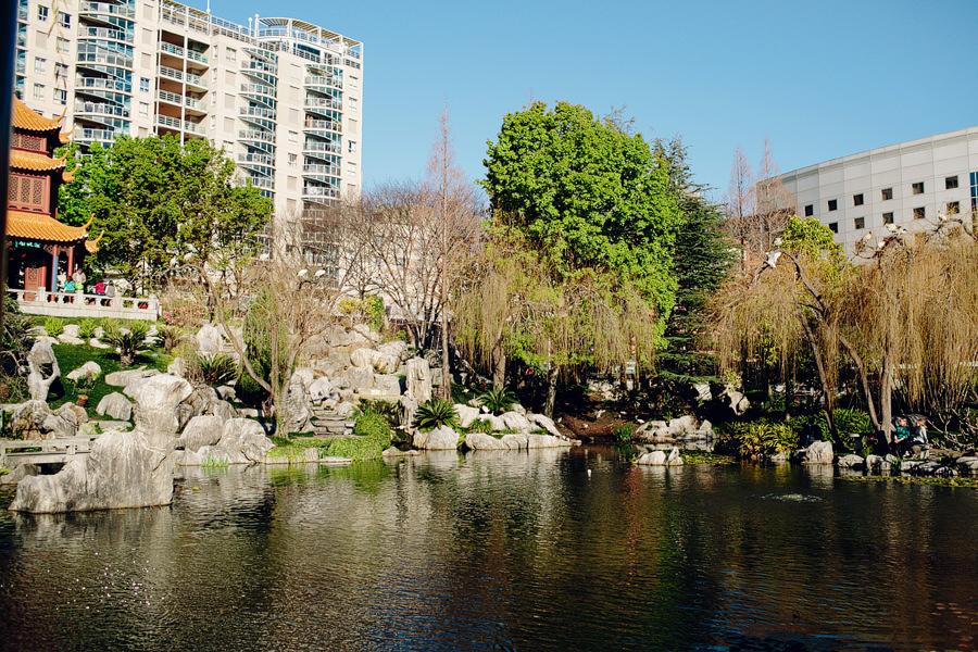 Chinese Garden of Friendship Wedding Photographer